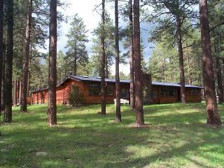 Charley's Mountain Retreat