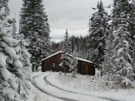 **ONLY AVAILABLE 4 WEEKS A YEAR** Shoshone National Forest cabin rental