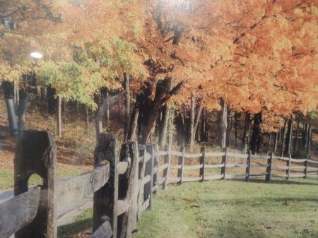 Winterwood Country Estate - 26 Scenic Acres