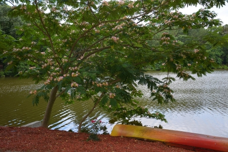 Greystone Cottage & Spa on the Lake